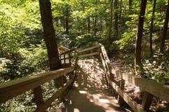 Ein hölzernes Treppenhaus der Wicklung im Wald stockbild