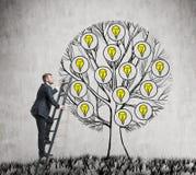 Ein hübscher Unternehmer klettert zum gezogenen Baum mit Glühlampen Lizenzfreie Stockfotos