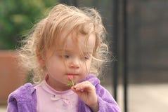 Ein hübsches Kleinkind, das eine kleine rosafarbene Knospe anhält Stockfotografie