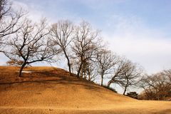 Ein Hügel mit Bäumen im Winter stockbild