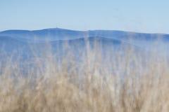 Ein Hügel mit viewtower Lizenzfreies Stockfoto