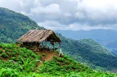 Ein Hüttenstandpunkt an Phu-Chi-Fa in Chiang Rai, Thailand lizenzfreies stockfoto