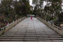 Ein halber Tempel der steilen Leiter-EIn Gebirgs Stockfotos