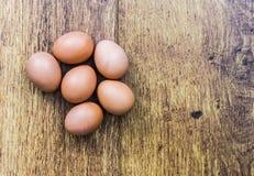 Ein halbes Dutzend braune Eier Stockbild