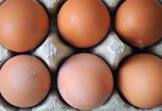 Ein halbes Dutzend Eier Stockbilder