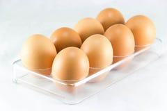 Ein halbes Dutzend Eier in der Eierablage Stockfoto