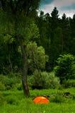 Ein Halt am Rand des Waldes Lizenzfreies Stockfoto