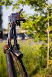 Ein handgemachtes des Eisens zeigt auf den Himmel und auf einen grünen Baum Die Hand wird etwas im Rost umfasst Stockfotografie