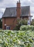 Ein Haus des roten Backsteins in einem Abstand Stockbild