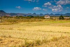 Ein Haus herein in einem Bauernhof einsam in China Stockbild