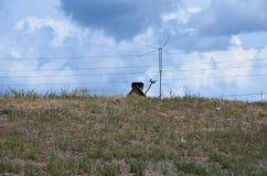 Ein Haustrichter mit Antenne Stockbilder