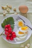 Ein helles Frühstück lizenzfreies stockbild