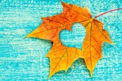 Ein Herbstblatt mit geformtem Ausschnitt des Herzens lizenzfreies stockfoto