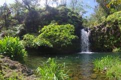 Ein herrlicher Wasserfall auf der Straße zu Hana Lizenzfreie Stockfotos