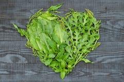 Ein Herz des unterschiedlichen Grüns Lizenzfreie Stockfotografie