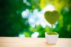 Ein Herz-förmiger Baum auf Unschärfehintergrund Stockfotos