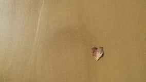Ein Herz formte trockenes Blatt auf dem Sand Stockfotografie