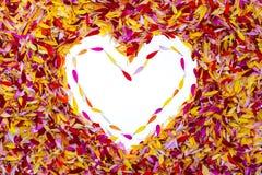 Ein Herz innerhalb der Blumenblätter Stockfotografie
