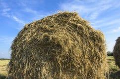 Ein Heuschober auf dem Feld gegen einen Hintergrund des blauen Himmels Lizenzfreie Stockfotos