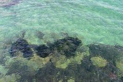 Ein Hintergrund von Crystal Clear Water Over Rocks und von Koralle stockfotografie