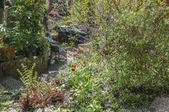 Ein Hinterhof umgeben durch schöne Sträuche Lizenzfreies Stockbild