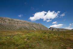 Ein hoher Gebirgsgrünfeld mit Bergen im Hintergrund, Querstation lizenzfreie stockbilder