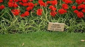 Ein Holzschild, das rät, um zu gefallen, halten weg vom Gras, mit grünem Gras im Vordergrund und einem Blumenbeet mit roten Blume lizenzfreies stockfoto