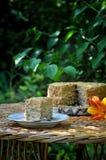 Ein Honigkuchen im Garten lizenzfreies stockfoto