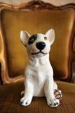 Ein Hund Stockbild