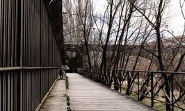 Ein Hund, der entlang die Brücke im Bernesga-Fluss, in Leon geht Im Hintergrund die San- Marcosbrücke und die Bäume, die Überflus lizenzfreie stockbilder