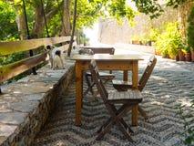 Ein Hund an Heiliges Panteleimon-Kloster Lizenzfreies Stockbild