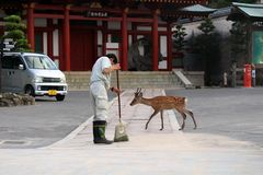 Ein japanisches Personal vermutlich ein Hausmeister? den Boden für herein säubern lizenzfreies stockfoto