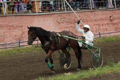 Ein Jockey in einem Wagen Lizenzfreie Stockfotos