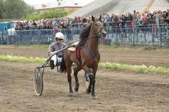 Ein Jockey in einem Wagen Stockfoto