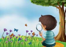 Ein Junge, der eine Vergrößerungslinse am Garten im hillt hält Stockbild