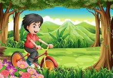 Ein Junge, der am Holz radfährt stock abbildung