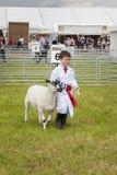 Ein Junge gewinnt ersten Preis mit seinem Lamm beim königlichen Cheshire Lizenzfreie Stockfotos