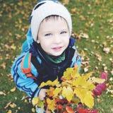 Ein Junge hält einen Blumenstrauß des Herbstlaubs, ein Porträt, eine Nahaufnahme, ein Gefühl, Stockfotografie