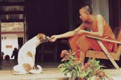 Ein junger Mönch, der einen streunenden Hund einzieht Lizenzfreie Stockbilder