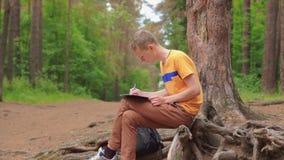 Ein junger Mann im Wald sitzt und malt ein Bild mit einem Bleistift stock video