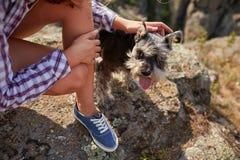 Ein junges Mädchen, das ihren Hund auf einem unscharfen natürlichen Hintergrund streichelt Ein kleiner Hund in den weiblichen Hän Lizenzfreie Stockbilder