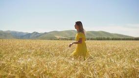 Ein junges Mädchen in einem gelben Kleid mit dem langen Haar, das auf einem Weizenfeld läuft Langsame Bewegung stock footage