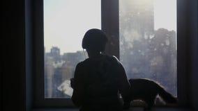 Ein junges Mädchen hört Musik auf Kopfhörern, Tänze, sitzt eine Katze auf dem Fensterbrett und betrachtet die Hosteß Slowmotion stock video
