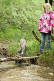 Ein junges Mädchen spielt in der Natur mit ihrer Katze lizenzfreies stockfoto
