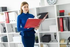 Ein junges Mädchen steht im Büro nahe dem Schutz und hält einen Ordner mit Dokumenten in ihren Händen Lizenzfreie Stockfotografie