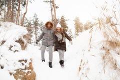 Ein junges Paar, ein Mann und eine Frau gehen in einen schneebedeckten Wald des Winters lizenzfreies stockbild