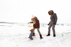 Ein junges Paar, ein Mann und eine Frau gehen mit ihrem Hund in der Winterfreizeit Wald des Winters schneebedeckten Hundeliebhabe lizenzfreie stockfotografie