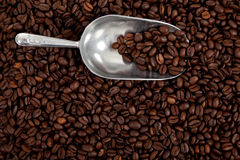 Ein Kaffeebohnehintergrund mit einer silbernen Schaufel Lizenzfreie Stockbilder
