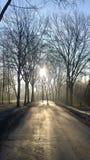 Ein kalter aber sehr schöner Tag lizenzfreies stockbild