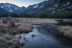 Ein kalter Morgen in Rocky Mountain National Park Stockbilder